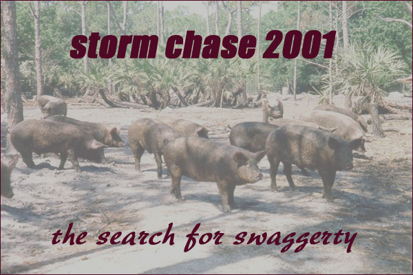 Storm Chase 2001